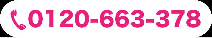 0120-663-378